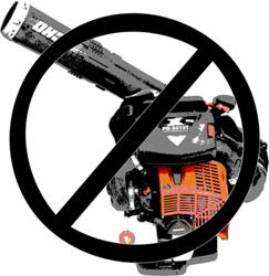 no leaf blowers
